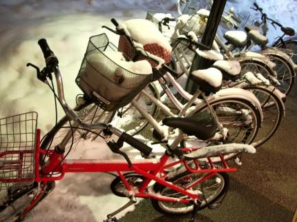 Snow bicycles