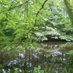 Kallinge_River_Walk