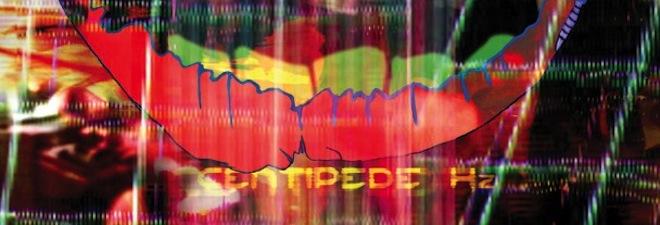 Animal Collective, Centipede Hz album cover, detail.