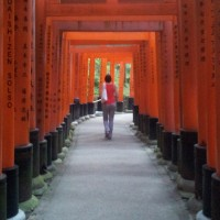 A section of the torii path behind Fushimi Inari-taisha Shrine in Kyoto