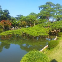 Manicured trees and pond at Kenrokuen garden, Kanazawa