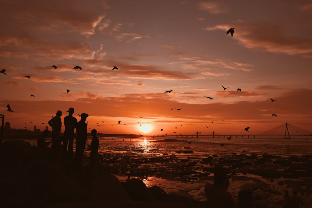 People standing on a shoreline at sunset