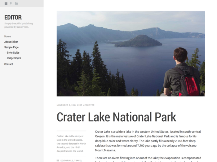 A screenshot of the Editor WordPress theme, which is nowhere near as flexible and up-to-date as Eksell WordPress theme.